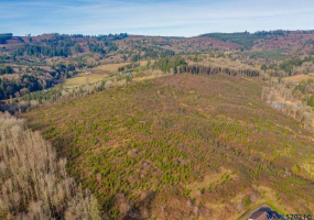 Barker, Rainier, Oregon 97048, ,Land (1+ Acre),Barker,773026
